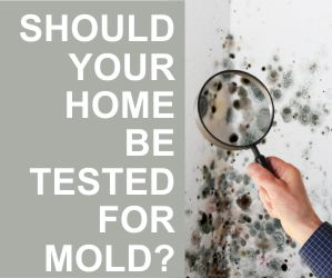 Should your home be tested for mold?
